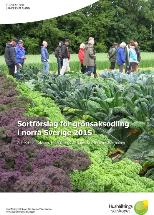 sortforslag-for-gronsaksodling-i-norra-sverige-20151-1
