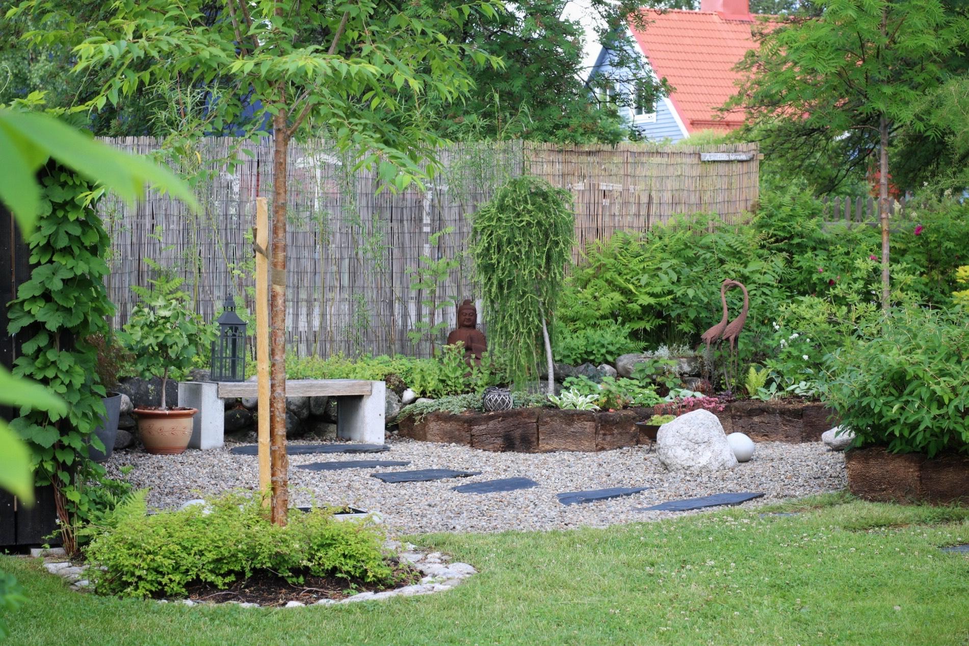 Trädgårdinorr IMG_2418
